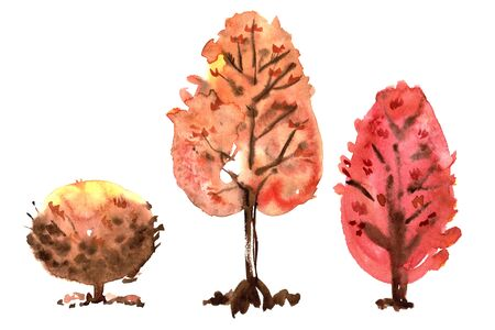Watercolor hand painted orange and red autumn trees Stock Photo