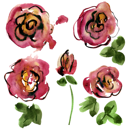 Watercolor hand painted roses. Elements for design