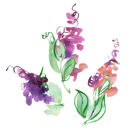 Watercolor hand painted abstract purple flowers. Elements for design