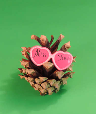 pine cone in pink glasses shape heart and inscription Miss you