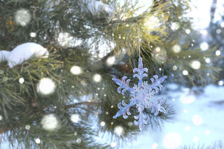 Snowflake Christmas toy, Spruce, fir green branch in winter park covered with snow. New Year holiday atmosphere, spirit. Glare and bokeh, evening twilight