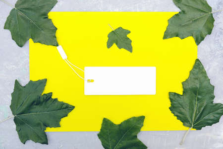 Autumn sale concept. Cardboard label and natural leaves over yellow gray background. Flat lay. copy space