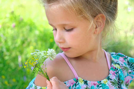 Little girl picking summer flowers in a field. Happy child enjoying nature outdoors Banque d'images