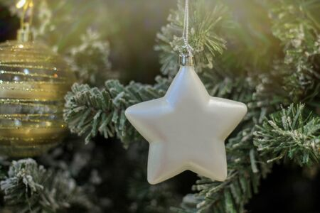Christmas toy white star on the branch of the Christmas tree. decorated Christmas tree to celebrate the new year. festive mood Banco de Imagens