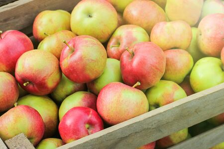 harvest of fresh organic apples in orchard. Freshly picked ripe apples in dark wooden crates on green grass. Stock fotó