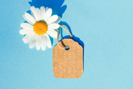 White Daisy on a blue background with a tag. Concept of summer sales, summer purchases Banco de Imagens