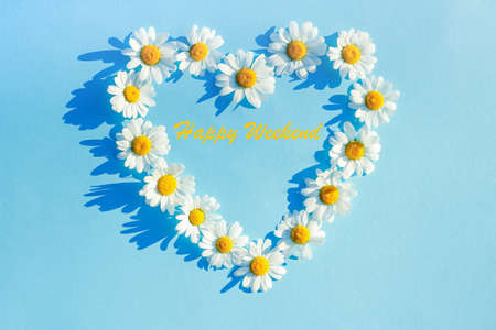 White Daisy on a blue background laid out in the shape of a heart. spring and summer minimal concept. Flat lay