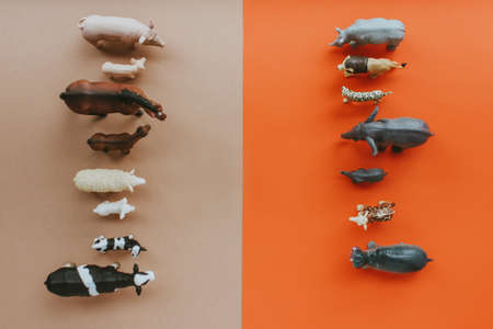animals living on the farm stand in front of wild animals on a red-brown background. the view from the top.