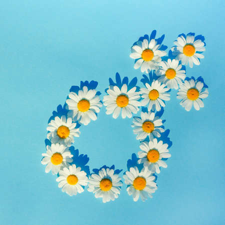 the female gender symbol is laid out with white daisies on a blue background