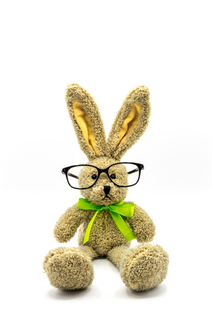 Brown rabbit / Easter bunny with glasses Banque d'images - 116595510