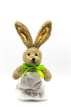 Brown rabbit in easter bunny in bread bag Banque d'images - 116595511
