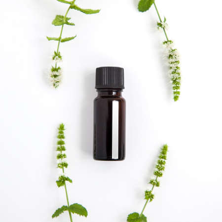 one bottle of peppermint essential oil and fresh mint of brunch on white background