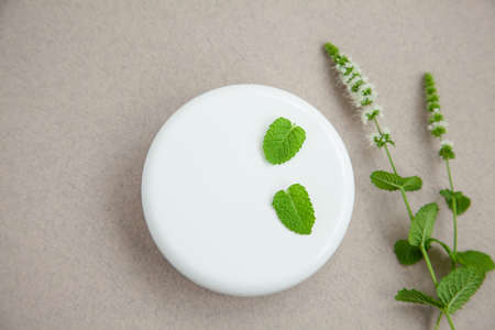 jar of cream with sprigs of fresh peppermint on a grey background. Top view