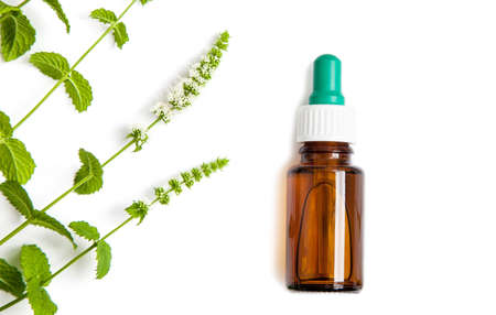 Bottle of herbal medicine dropper with green mint branches on white background