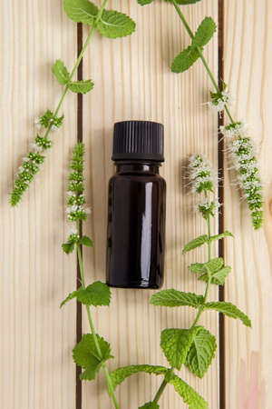 one bottle of peppermint essential oil and fresh mint of brunch on wooden background Stok Fotoğraf
