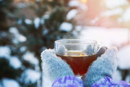 mittened hands holding a glass mug of hot tea in the winter forest Stock Photo