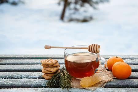 Cup of hot tea with honey, tangerines and cookies in the winter forest. the concept of Christmas still life.Copy space and christmas drink