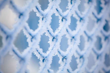 Frozen fence made of metal mesh covered with snowy hoarfrost, winter day. Winter snow texture. Close up.