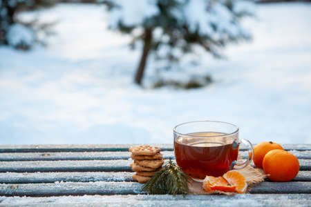 Cup of hot tea, tangerines and cookies in the winter forest. the concept of Christmas still life.Copy space and christmas drink