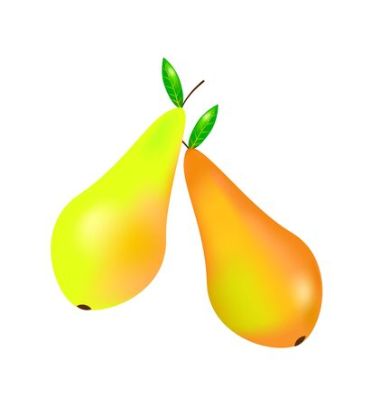 pears: Two yellow orange pears on white background