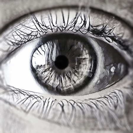 Eye in monochrome. Black and white photo of eye. close up