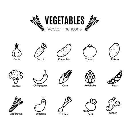 Vegetables vector thin line icon set Illustration