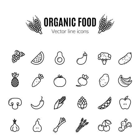 Fruit and vegetables vector thin line icon set Stock Illustratie