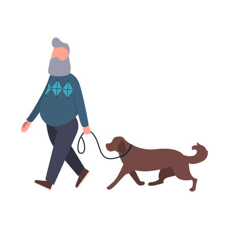 Dog walker walking pet outdoor. Senior stroll with labrador. Cartoon flat character. Pet walking service concept art