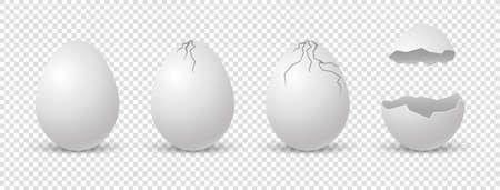 Brocken eggs. Crack eggshell. Vector realistic break white shell on transparent background. Standard-Bild
