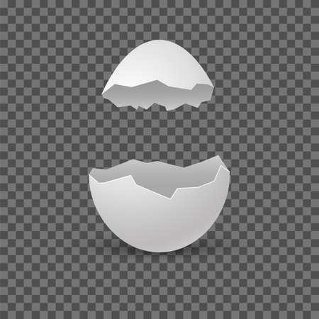 Brocken eggs. Crack eggshell. Vector realistic break white shell on transparent background. Illustration