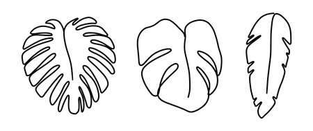 One line monstera leaf art. Palm continuous contour plant . Vector elegant modern print 矢量图像