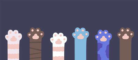 Cat paws. Kitty fur legs. Funny domestic pets foot 向量圖像