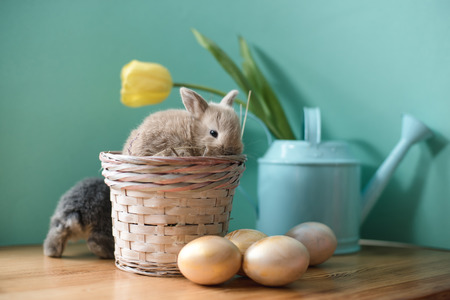 Easter still life with little rabbits in a basket. Banco de Imagens