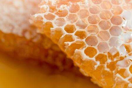 Large pieces of natural honeycombs are in a puddle of fresh honey. Stock Photo