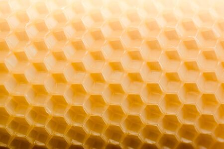 Beautiful pattern texture hexagonal honeycombs in saturated color.