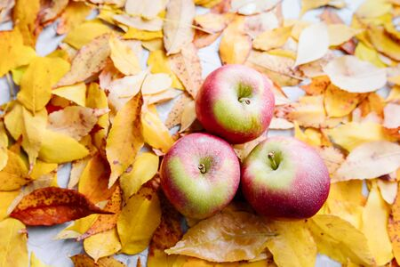 Bright fallen colorful golden autumn leaves and apples background. Stok Fotoğraf