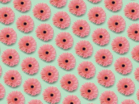 Bright  floral gerbera in seamless pattern. Banque d'images - 140767435