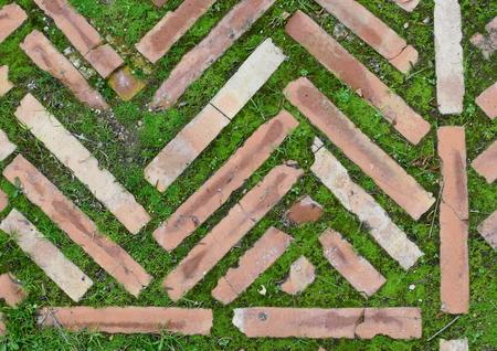 old bricks & green grass Stockfoto