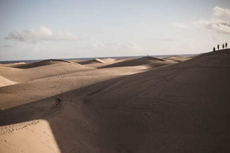 The desert of the dunes of Maspalomas at sunset, in Gran Canaria Canary islands Spain