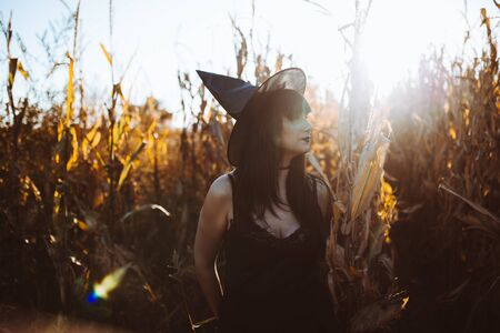 Halloween costume witch girl portrait in a cornfield at sunset. Beautiful serious young woman in witches hat with long black hair and dark lips. Magic forest background. Halloween holiday concept.
