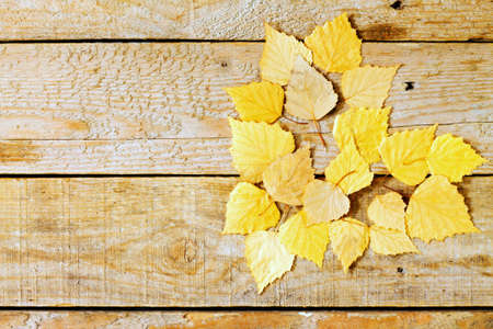 birch leaf: Autumn birch leaf in the shape of a heart on a wooden background