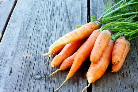 zanahorias: Cosecha de zanahorias frescas en un fondo de madera