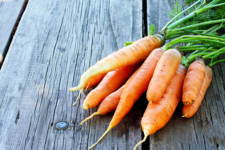 Harvest of fresh carrots on a wooden background