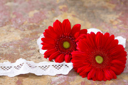 home accent: Red flower gerbera daisy and lace ribbon on vintage wooden background, selective focus. Stock Photo