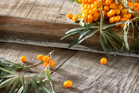 seabuckthorn: Seabuckthorn berries branch on vintage wooden background. Space for your text. Stock Photo