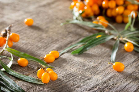 argousier: Seabuckthorn berries branch on vintage wooden background. Space for your text. Banque d'images