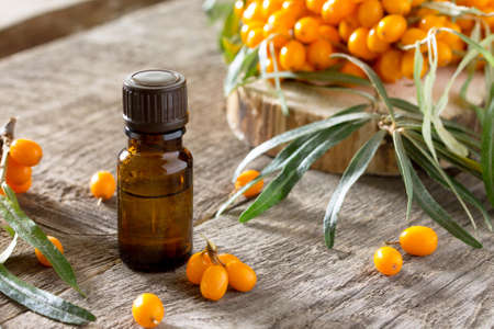 argousier: Seabuckthorn berries branch of sea buckthorn and oil on a vintage wooden background. Banque d'images