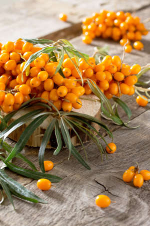 seabuckthorn: Seabuckthorn berries branch on vintage wooden background. Autumn background. Stock Photo