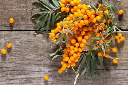 Seabuckthorn berries branch on vintage wooden background. Top view, place for your text.