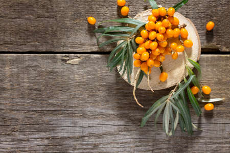 argousier: Seabuckthorn berries branch on vintage wooden background. Top view, place for your text.